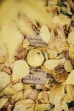 Φθινόπωρο αγάπης με το κυδώνι Στοκ Εικόνες