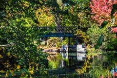 φθινόπωρο Αγγλία νέα Στοκ εικόνα με δικαίωμα ελεύθερης χρήσης