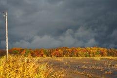 Φθινόπωρο κάτω από έναν σκοτεινό ουρανό στοκ φωτογραφίες