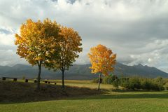Φθινόπωρο κάτω από υψηλό Tatras Στοκ εικόνες με δικαίωμα ελεύθερης χρήσης