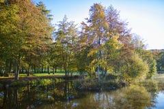 Φθινόπωρο και φύση Στοκ Εικόνα