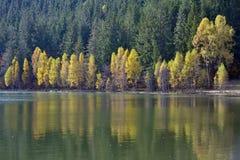 Φθινόπωρο με το κίτρινο φύλλωμα Στοκ φωτογραφία με δικαίωμα ελεύθερης χρήσης