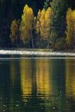Φθινόπωρο με το κίτρινο φύλλωμα, που απεικονίζεται στη λίμνη Στοκ Φωτογραφίες