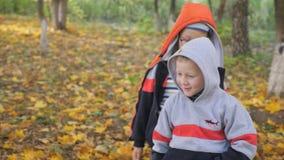 Φθινόπωρο Μικρά παιδιά στα κίτρινα φύλλα Τα παιδιά παίζουν στην οδό με τα πεσμένα φύλλα Άλσος φθινοπώρου των σημύδων και απόθεμα βίντεο