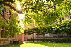 φθινόπωρο Μπρυζ Στοκ Φωτογραφίες