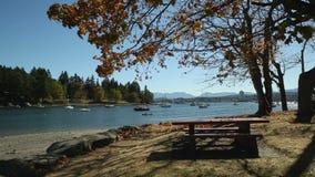 Φθινόπωρο νησιών του Νιουκάσλ, Nanaimo απόθεμα βίντεο