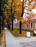 φθινόπωρο νωρίς Στοκ εικόνες με δικαίωμα ελεύθερης χρήσης