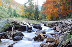 Φθινόπωρο ουκρανικά Carpathians Στοκ εικόνα με δικαίωμα ελεύθερης χρήσης