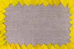 Φθινόπωρο Πλαίσιο συνόρων των κίτρινων φθινοπωρινών φύλλων στο υπόβαθρο υφασμάτων Στοκ εικόνα με δικαίωμα ελεύθερης χρήσης