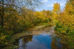 Φθινόπωρο, ποταμός, λίμνη, δέντρα, φύλλα, Οκτώβριος, φύση, τοπίο Στοκ Εικόνες