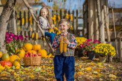 Φθινόπωρο που συλλέγει τα μήλα στο αγρόκτημα Τα παιδιά συλλέγουν τα φρούτα στο καλάθι κατσίκια διασκέδασης υπαίθρια στοκ εικόνα με δικαίωμα ελεύθερης χρήσης
