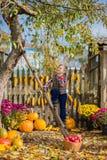 Φθινόπωρο που συλλέγει τα μήλα στο αγρόκτημα Τα παιδιά συλλέγουν τα φρούτα στο καλάθι κατσίκια διασκέδασης υπαίθρια στοκ φωτογραφία με δικαίωμα ελεύθερης χρήσης
