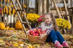 Φθινόπωρο που συλλέγει τα μήλα στο αγρόκτημα Τα παιδιά συλλέγουν τα φρούτα στο καλάθι κατσίκια διασκέδασης υπαίθρια στοκ φωτογραφίες
