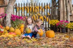 Φθινόπωρο που συλλέγει τα μήλα στο αγρόκτημα Τα παιδιά συλλέγουν τα φρούτα στο καλάθι κατσίκια διασκέδασης υπαίθρια στοκ φωτογραφία