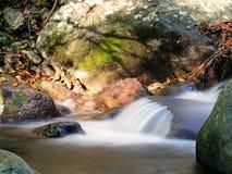 Φθινόπωρο, πτώση Λεπτομέρεια ρευμάτων με τη μακροχρόνια έκθεση, φύλλα, ηλιοφάνεια Στοκ Φωτογραφία