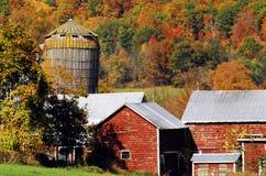 Φθινόπωρο-πτώση-ξεχαρβαλωμένο αγρόκτημα στο κράτος της Νέας Υόρκης στοκ φωτογραφία