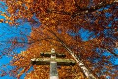 Φθινόπωρο, πτώση Στοκ Φωτογραφία