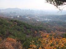 Φθινόπωρο Σεούλ στοκ εικόνα με δικαίωμα ελεύθερης χρήσης
