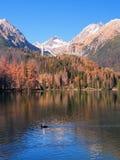 Φθινόπωρο σε υψηλό Tatras, Strbske Pleso Στοκ Φωτογραφίες