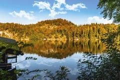 Φθινόπωρο σε Alpsee Στοκ Εικόνες