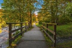 Φθινόπωρο σε Alpsee Στοκ φωτογραφία με δικαίωμα ελεύθερης χρήσης