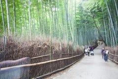 Φθινόπωρο σε Arashiyama, Κιότο, Ιαπωνία Στοκ Φωτογραφίες
