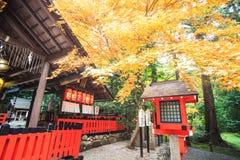 Φθινόπωρο σε Arashiyama, Κιότο, Ιαπωνία Στοκ Εικόνες
