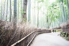 Φθινόπωρο σε Arashiyama, Κιότο, Ιαπωνία 2014 Στοκ Εικόνα