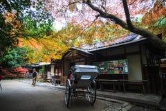 Φθινόπωρο σε Arashiyama, Κιότο, Ιαπωνία 2013 Στοκ Φωτογραφίες