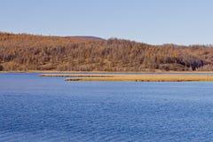 Φθινόπωρο σε Arxan, Κίνα Στοκ Εικόνες