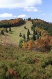 Φθινόπωρο σε Javorniky (βουνά σφενδάμνου) Στοκ Εικόνα
