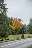 Φθινόπωρο σε Seahurst 2 στοκ εικόνα