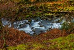 Φθινόπωρο σε Stockghyll στην αγγλική περιοχή λιμνών στοκ φωτογραφία