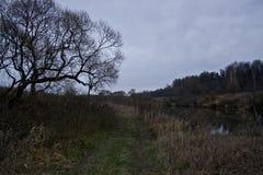 φθινόπωρο σιωπηλό Στοκ φωτογραφία με δικαίωμα ελεύθερης χρήσης