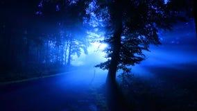 Φθινόπωρο στα βουνά Ανατολή Παραλλαγή - κρύα παλέτα στοκ εικόνες