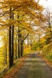 Φθινόπωρο στα βουνά στοκ εικόνα