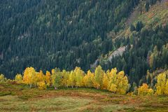 Φθινόπωρο στα βουνά Svaneti, Γεωργία Στοκ φωτογραφία με δικαίωμα ελεύθερης χρήσης