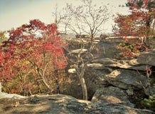 Φθινόπωρο στην ένωση του κρατικού πάρκου βράχου στοκ εικόνα με δικαίωμα ελεύθερης χρήσης