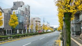 Φθινόπωρο στην Ιαπωνία, αλλαγή εποχής στην Ιαπωνία, biloba Ginkgo στο wa Στοκ Φωτογραφία
