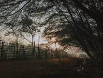Φθινόπωρο στην Ινδονησία, τη λίμνη και το δάσος, ηλιοβασίλεμα, φωτογραφία φύσης Ταξίδι Yogyakarta στις 5 Οκτωβρίου 2018 στοκ φωτογραφία με δικαίωμα ελεύθερης χρήσης