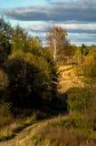 Φθινόπωρο στην κεντρική Ρωσία Στοκ Φωτογραφία
