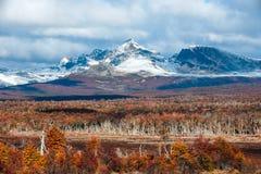 Φθινόπωρο στην Παταγωνία Οροσειρά Δαρβίνος, Γη του Πυρός στοκ εικόνες