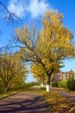 Φθινόπωρο στην πόλη στοκ εικόνα