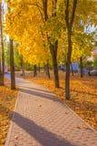 Φθινόπωρο στην πόλη Στοκ εικόνες με δικαίωμα ελεύθερης χρήσης