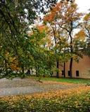 Φθινόπωρο στην πόλη Στοκ εικόνα με δικαίωμα ελεύθερης χρήσης
