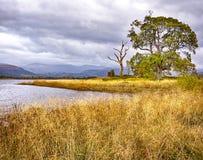 Φθινόπωρο στη λίμνη Bassenthwaite Στοκ φωτογραφία με δικαίωμα ελεύθερης χρήσης