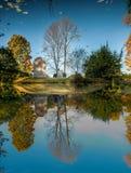 Φθινόπωρο στη Αγία Πετρούπολη Γυρισμένη κόσμος άνω πλευρά - κάτω από 2 Στοκ Εικόνες