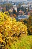 Φθινόπωρο στη Βιέννη Στοκ Φωτογραφίες