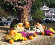 Φθινόπωρο στη νυσταλέα κοίλη Νέα Υόρκη Στοκ φωτογραφίες με δικαίωμα ελεύθερης χρήσης