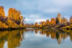 Φθινόπωρο στη Σιβηρία στοκ εικόνα με δικαίωμα ελεύθερης χρήσης